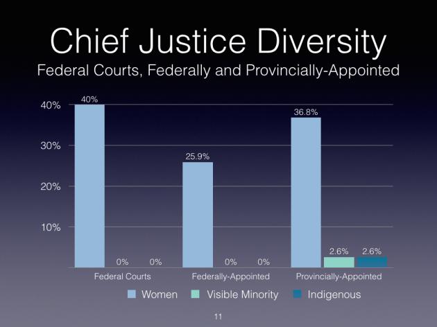 Judicial Diversity 2016 - DRAFT.011