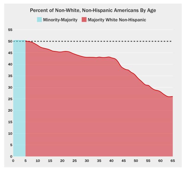 White Non-White USA