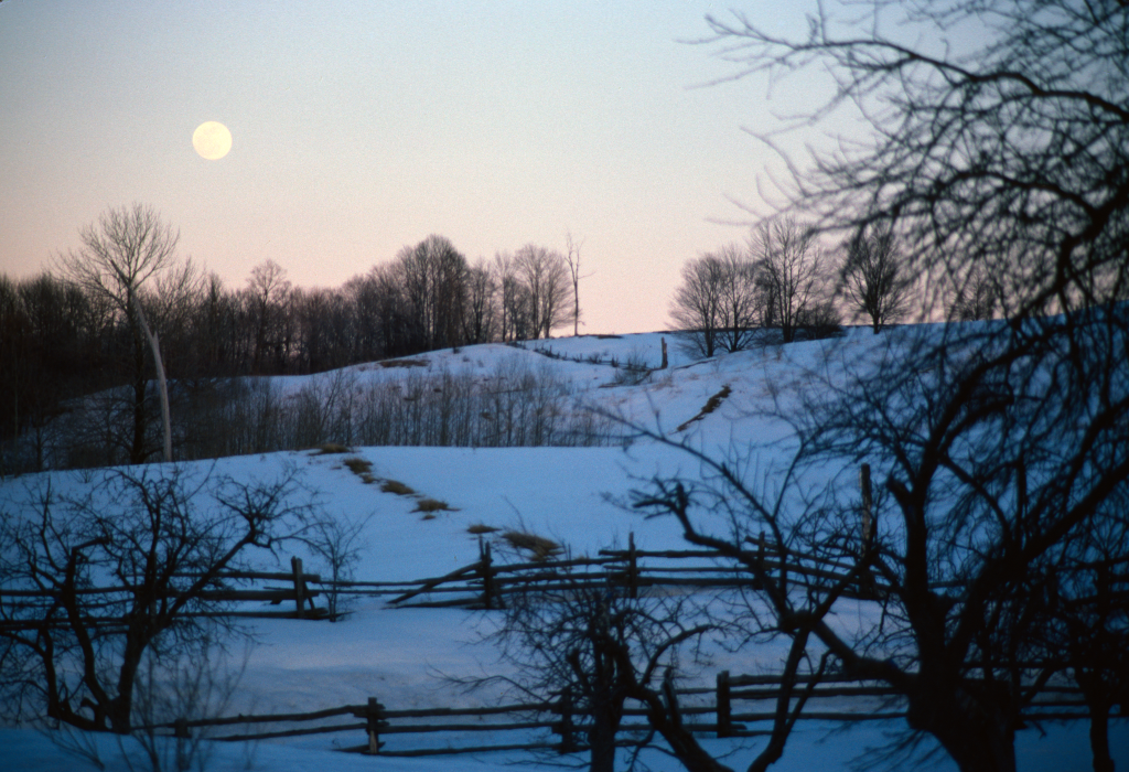 Near Orangeville ON, Moonrise